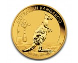 Australian Gold Kangaroo - 1/10 oz. (2012 & Prior) ~ $100 Face Value